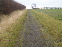 There is a linear gradient of about 6% (1:17) for about 150m 