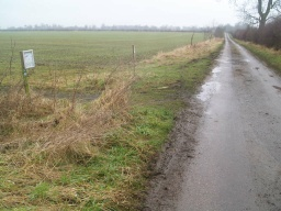 The tarmac road runs straight back towards the village of Hackthorn.