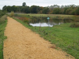 The crushed stone path is less well compacted but provides access towards another open pond.