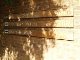Follow  red arrows for the Kingfisher trail (about 1200m) and the yellow arrows for the Lakeside Stroll (about 600m). Both these walks have an even, stable surface throughout. The Riverside trail uses grass paths for some of its route. None of the paths have significant gradients.