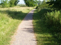 The path may narrow a little in places where grass has encroached