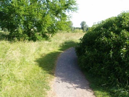 Vegetation growing in from the side may also narrow the path in places.