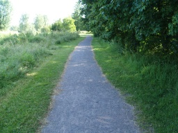 The path has some areas where there are small loose stones on the surface which is otherwise firm and even