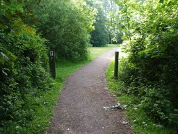 The path leads straight back towards the visitor centre