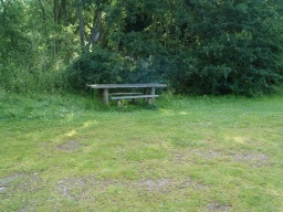 Picnic benches are often a little way from the paths