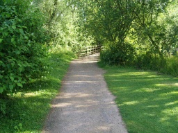 The path leads to a causeway just before the Kingfisher Hide.