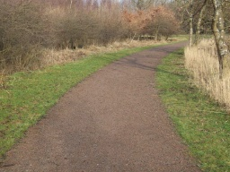 There is a slope across the path of about 7% (1:14) which runs for about 100m along the trial.