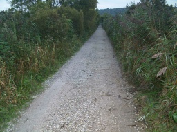 There are one or two areas where there are loose stones covering most of the path width.