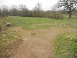 The path bears right. The bench is accessed over rough ground.