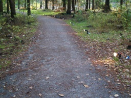 The path has a firm level surface throughout and is wide enough for two people to walk side by side.