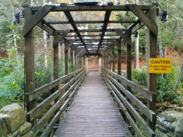 The bridge provides a short cut back to the parking bays at the start of the trail.