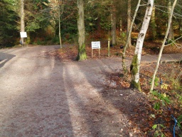 Turn right along the lochside path.The white signs are there only during the Enchanted Forest event.