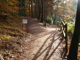 Keep right on the lower lochside path.There is a slope with a gradient of 11% (1:9) where the two paths meet.