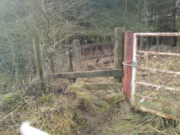 If you are able to get past this gate the path leads on to Cowdenbeath.