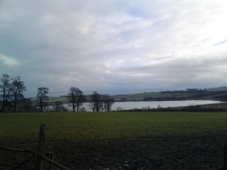Looking towards Loch Gelly.