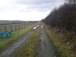 The track has been a well made road some time long ago but now has been built up with dirt and grass but with it being used by farm vehicle`s has become rutted.  The ruts are not deep and  vary in width between about 50cm to about a 1m or so.There can be puddles and muddy areas.