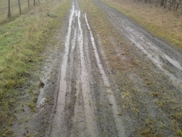 After wet weather parts of the track can become muddy.