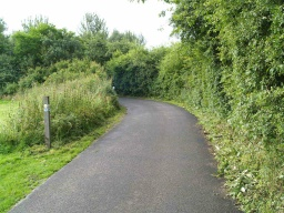 The route is shared with horse riders, cyclists and occasionally cars.