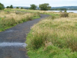 There is a short gradient of 8.9% (1:11) as the path turns to the loch..