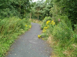 The path may be narrowed occasionally by encroaching vegetation.
