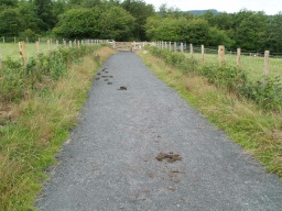 The path is shared with horse riders and cyclists.