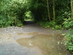 The route to the hide follows a similar track but may have some muddy puddles.