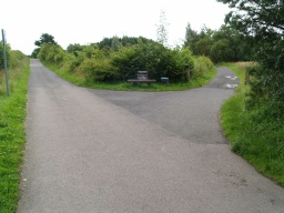 The round the loch trail leaves the road to the right by the seat.