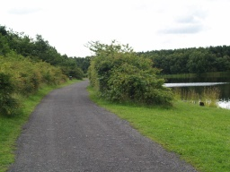 The path is well used in this area by walkers, cyclists and a few fisherman's  cars.