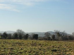 View of Pontesbury Hill.