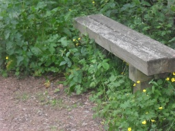 There is a bench approximately 200 metres from the start of the path