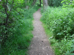 The path narrows to 400mm for approximately 2 metres