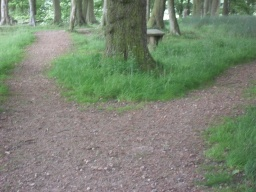 The path splits into two and continue to the right to follow the route around