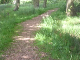 This path leads to the Archbishop Sharpe's monument