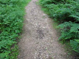 The surface has a water channel down the middle of path making it uneven with medium/large stones for 6 metres