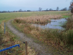 The path narrows a bit by the pond to a width of about 800mm
