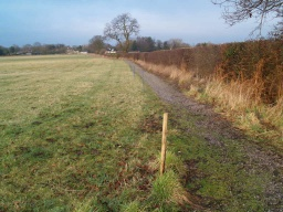 The path surface may uneven where grass has grown across it.