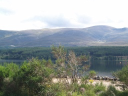 The car park and its picnic area give wonderful views of the Cairngorm mountains.