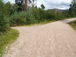The path back to the visitor centre leaves the wide track. Follow the red way marks.