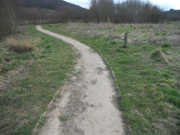 In some places, the trail has become worn and slightly uneven.