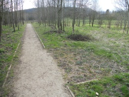 Entering a small area of woodland, the path has been widened to create a passing-place for users of wheeelchairs, mobility vehicles or pushchairs although these areas have not been maintained.