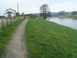 The path along the banks of the River Ribble is fairly consistent with a width throughout of about 900mm which may not be wide enough for two people to walk side by side without using the grass to the side of the path surface.
