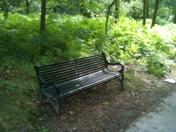 There is a bench available to rest and enjoy the surroundings