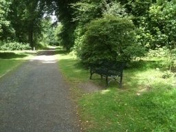 A seat is available just beside the path