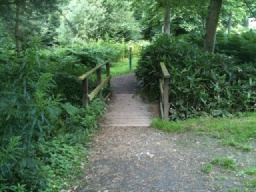 There is a small step (25mm) on and off the bridge which is narrowed by the bush to about 800mm in width.