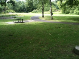 There is a picnic area behind Plean House.