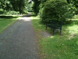 There is another seat just before the Heritage Trail turns right up the hill onto a less accessible path.You can continue straight ahead then turn left to take a more accessible short cut back to the car park.See the Plean Country Park Estate Phototrail