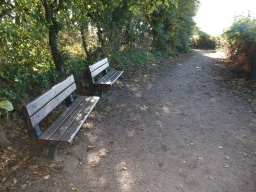 There are two seat before the path begins to slope down towards the shore.