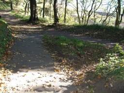 Bear left as the paths join at the bottom of the slope.(The path to the right is the other link from the  main tarmac track, see Extra Photos)
