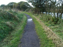 The path becomes narrower (600mm) for about 100m.
