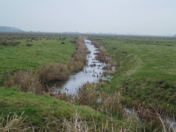 Typical fenland views are available all along the route.
